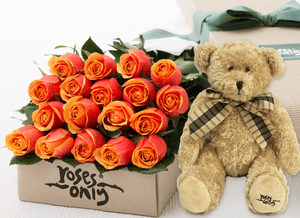 18 Cherry Brandy Roses Gift Box & Teddy Bear