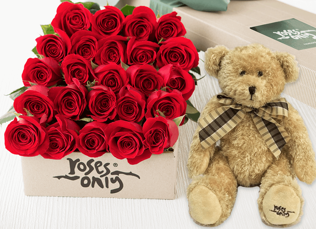 24 Red Roses Gift Box & Teddy Bear