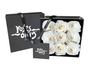 9 White Cream Infinity Preserved Roses