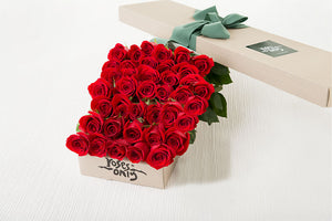 40 Red Roses Gift Box