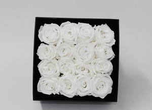 16 White Cream Year Long Infinity Roses