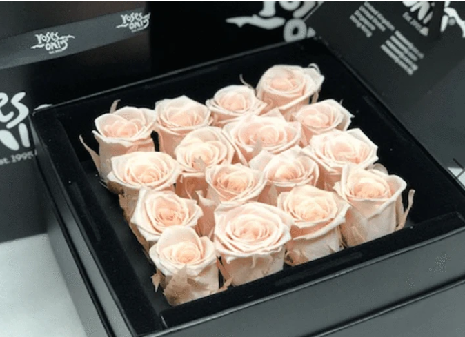 16 Valentines Light Pink Infinity Preserved Roses
