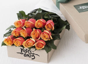 12 Cherry Brandy Roses Gift Box