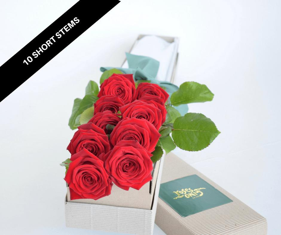 ROSES ONLY SIGNATURE 10 SHORT ROSES BOXES