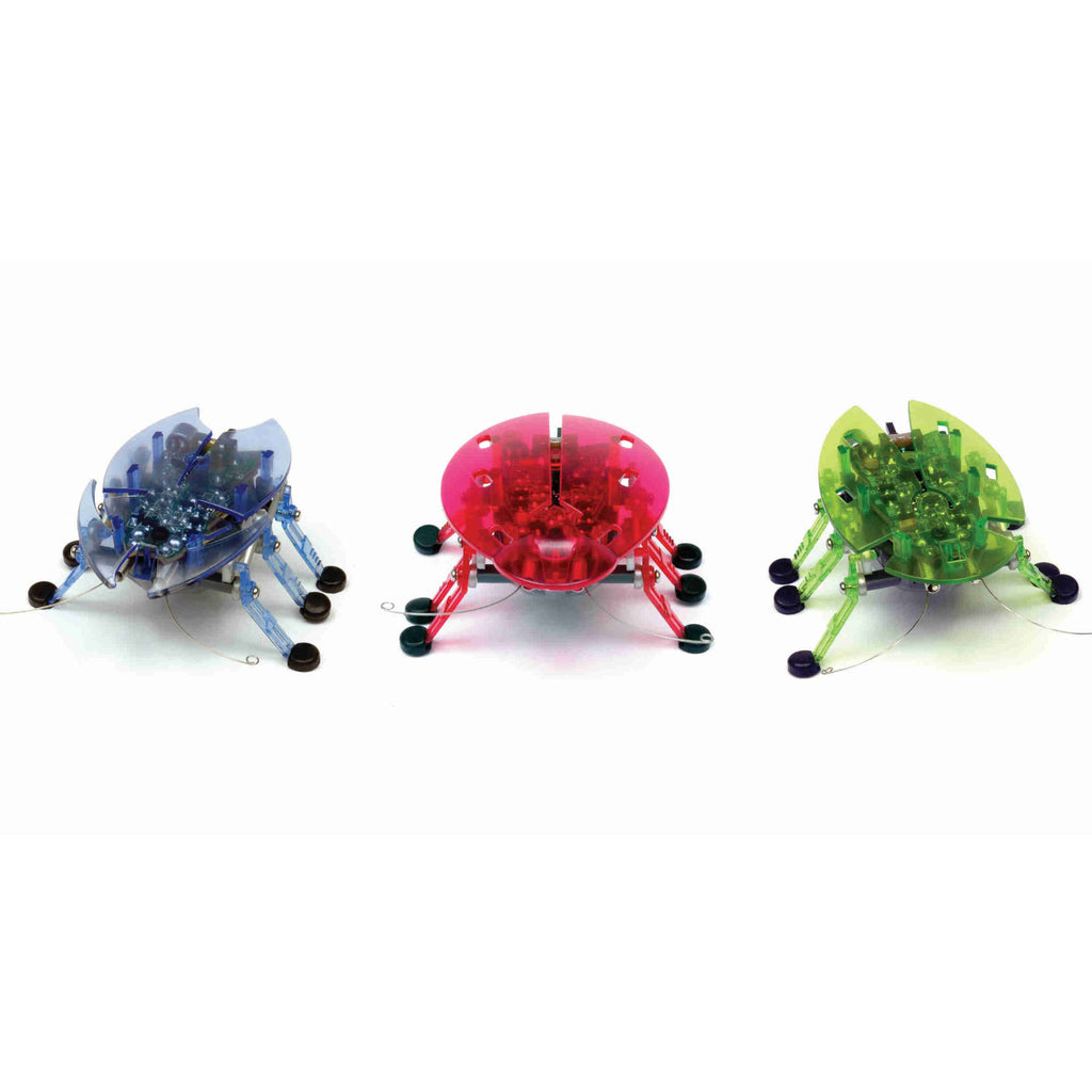 Hexbug - 2865 | Beetle (Assorted, One Per Order)