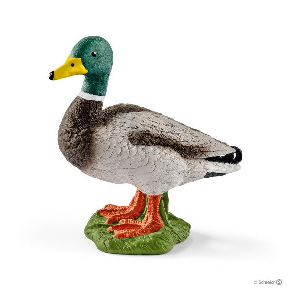 Schleich - 13824 | Farm World: Drake