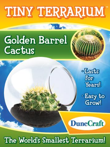 Toysmith - 1485 | Tiny Terrarium Golden Barrel Cactus