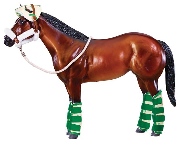 Comes with padded halter, head bumper and four protective shipping boots.