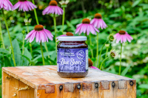 Blue Shoe Buckwheat Honey (500g)