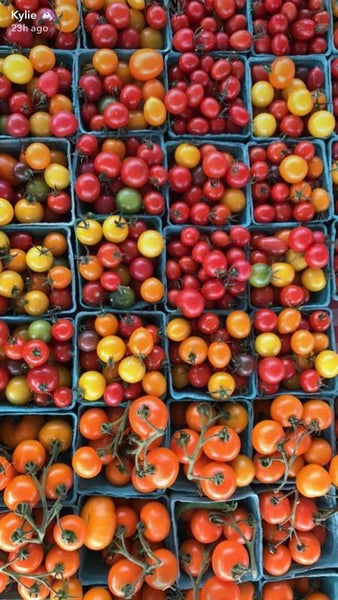 Just Farm Coloured Cherry Tomatoes (Pint)