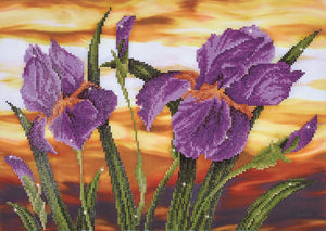 Diamond Dotz Diamond Painting Kit - Iris Sunset