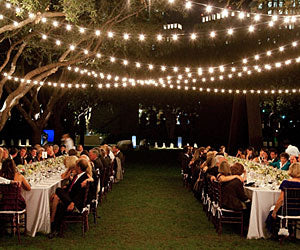 Give Your Backyard Or Patio The Ambiance That Youu0027ve Been Searching For! By  Adding Some Of Our Edison Bulb Patio Lights, Your Backyard Will Become A  Magical ...