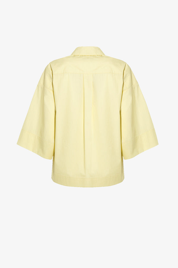 Nico Button Down Shirt in Ice Lemon