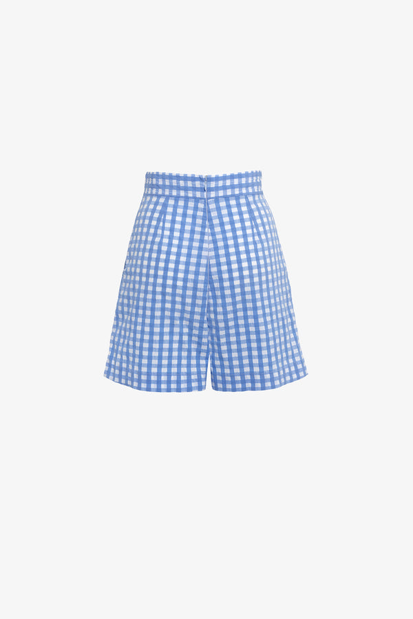 Robin High Waisted Shorts in Blue Gingham