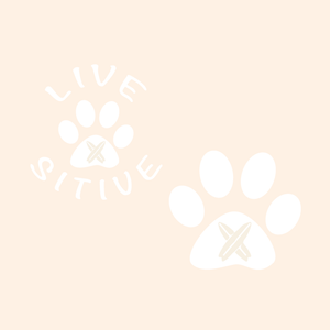 Paws on the Water Paddleboard Dog Paw decal Decals