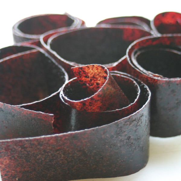 Blueberry Fruit Roll-ups