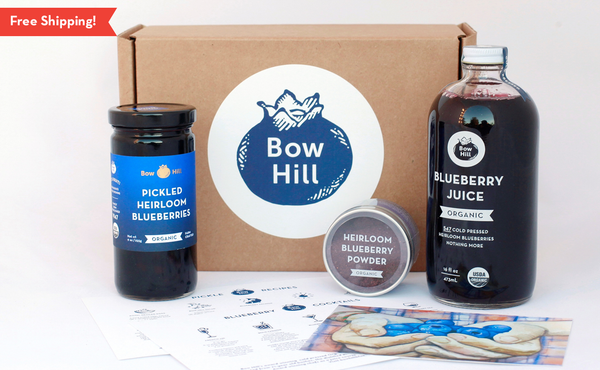 Blueberry Inspiration Kit