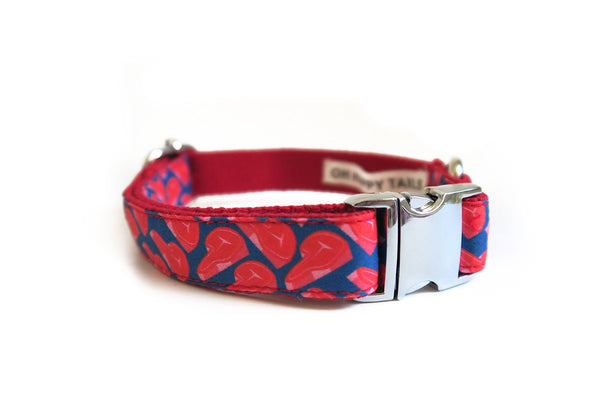 Meat Lovers Collar