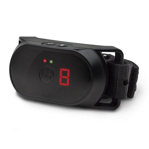 Motorola Dog No-Bark Collar - SCOUTBARK100
