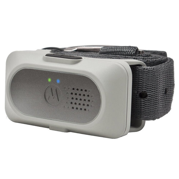 Motorola Additional Collar for SCOUTTRAINER50