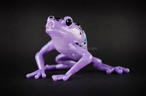 Chameleon Glass Purple Poison Dart Frog Hand Pipe - Brothers with Glass - 1