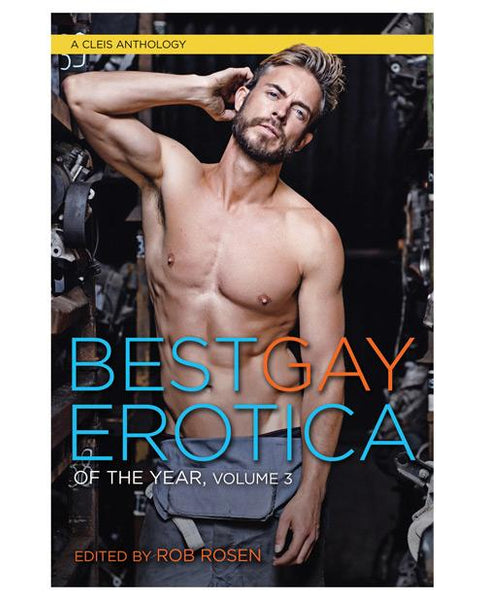 Best Gay Erotica Of The Year Volume 3-LoveBoxToys.com