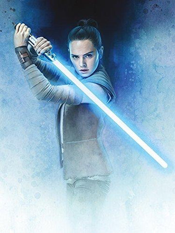 STAR WARS: The Last Jedi Rey Lightsaber Guard 60x80cm, Canvas, Multi-Colour, 60 x 80 x 3.2 cm