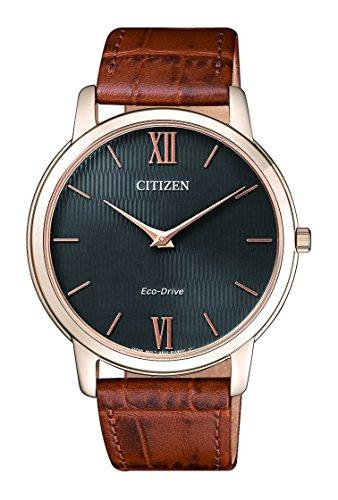 Citizen Men's Watch AR1133-15H