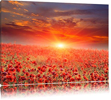 Poppy flowers field at sunset canvas, XXL huge Pictures completely framed with stretcher, Art print on wall picture with frame, cheaper than oil paintings and picture, no poster or poster size: 120x80 cm