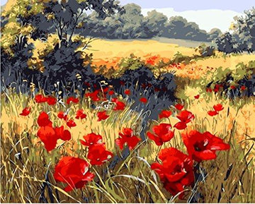 Paint by Numbers with Frame or Not, New Release Diy Oil Painting by Numbers Kits - Red Poppy Flower Garden 16*20 inches Linen Canvas - Digital Oil Painting Canvas Kits Junior for Adults Children Kids with 3X Magnifier - Wall Art Artwork Landscape Painting