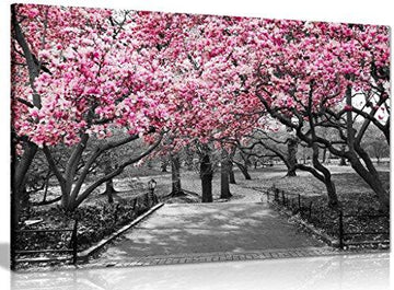 Black & White Wall Art Pink Blossoms Canvas Wall Art Picture Print (18x12in)