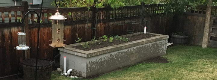 Self Watering Raised Bed Garden