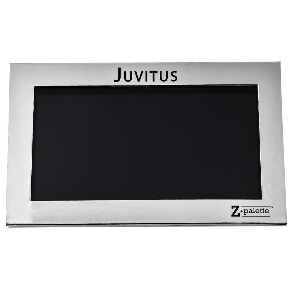 Z Palette Large Makeup Palette, JUVITUS Collection - Silver - 5