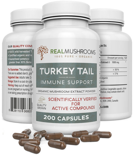 Turkey Tail Extract Capsules