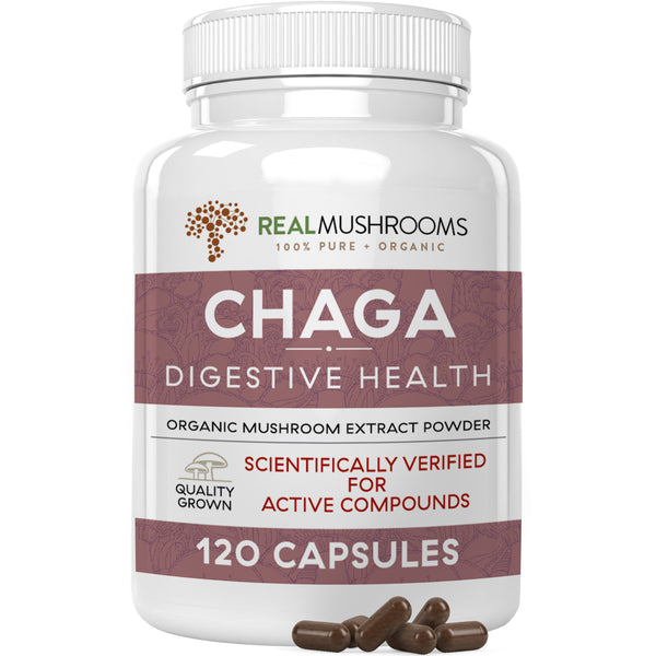 organic chaga extract capsules by Real Mushrooms