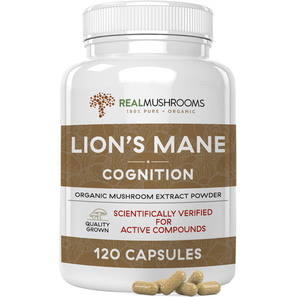 organic lions mane mushroom extract capsules by Real Mushrooms
