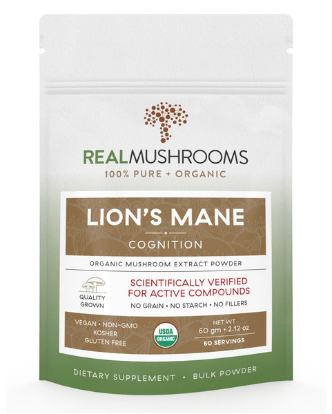 Lions Mane Extract - 60g Bulk Powder