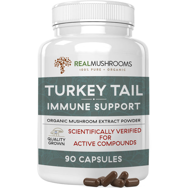 organic turkey tail mushroom extract capsules by Real Mushrooms