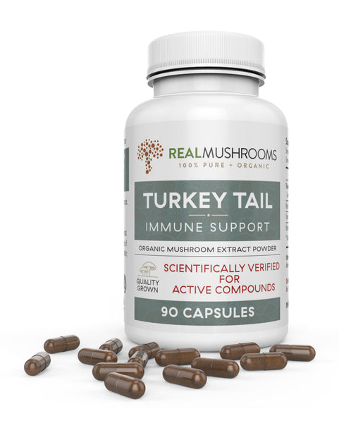 Turkey Tail Extract - 90 Capsules