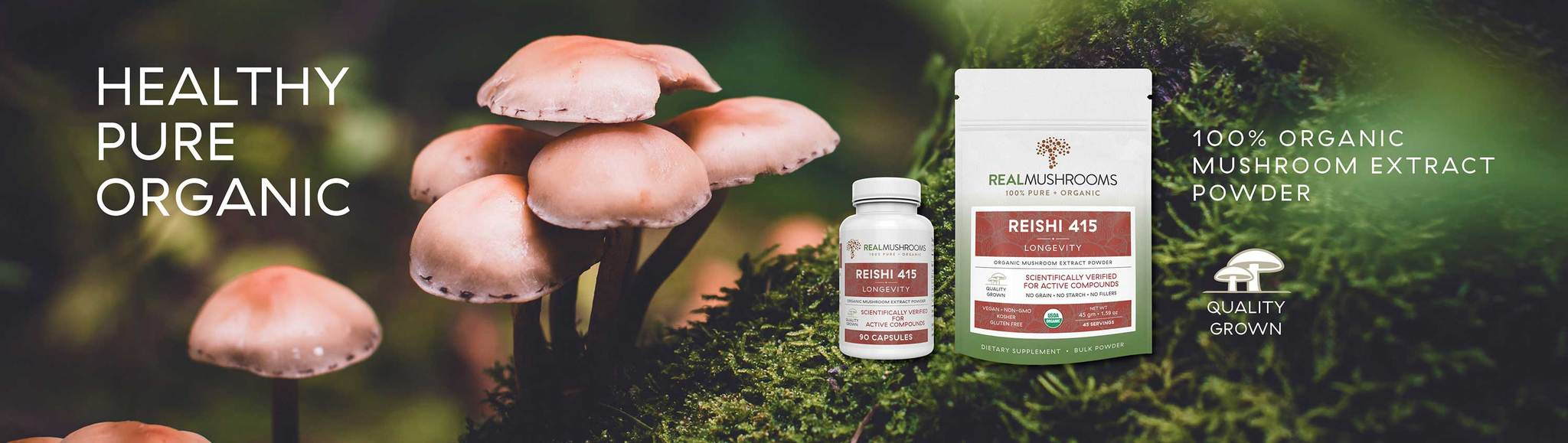 organic mushroom extract powders by real mushrooms