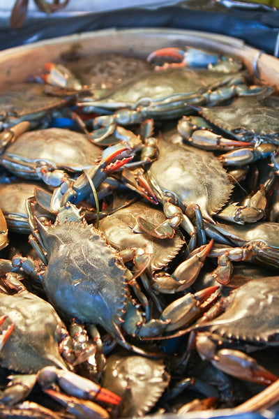 Blue Crabs (Local Delivery Only)