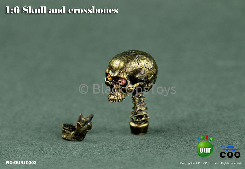 "1:6 Skull and Crossbones Series 2 ""Type B"" Simulation Skull with Eye Movement Headsculpt"