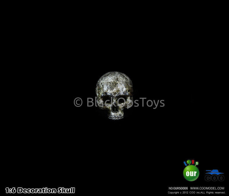 "1:6 Decoration Skull Series 1 ""Type B"" Headsculpt"