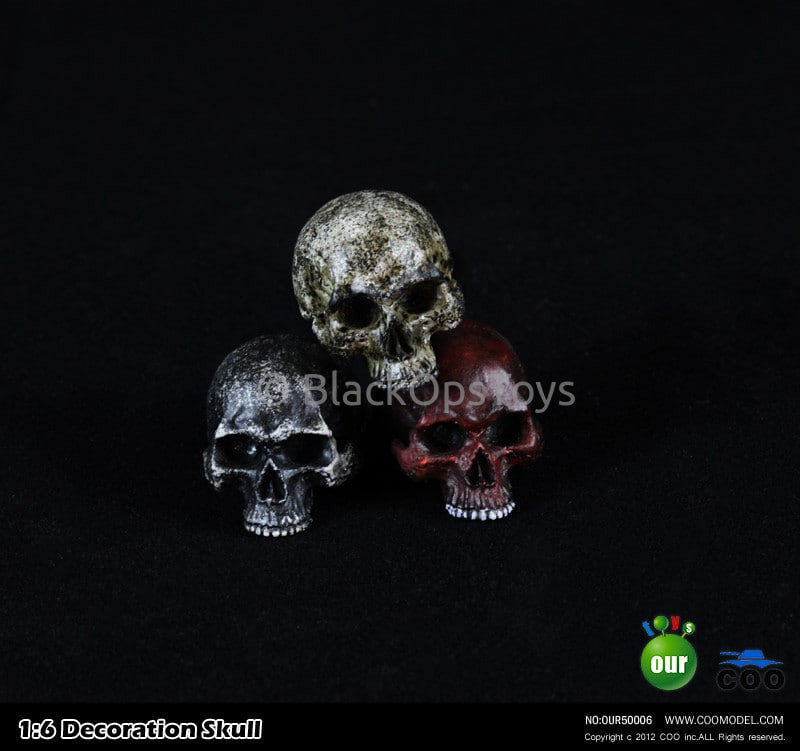 "1:6 Decoration Skull Series 1 ""Type A"" Headsculpt"