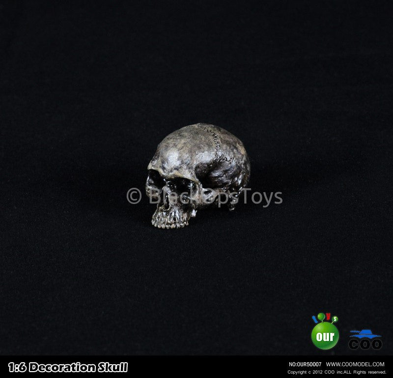 "1:6 Decoration Skull Series 2 ""Type C"" Headsculpt"