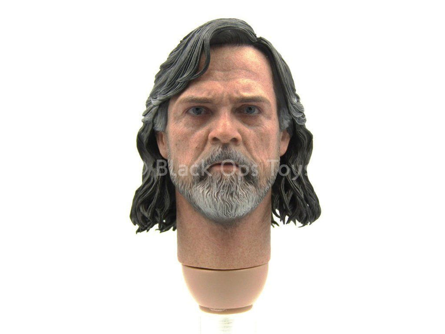 STAR WARS - Luke Skywalker - Head Sculpt in Mark Hamill Likeness