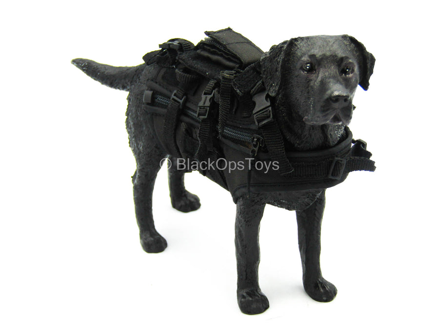 U.S Navy Seal - K9 Combat Vest w/Leash