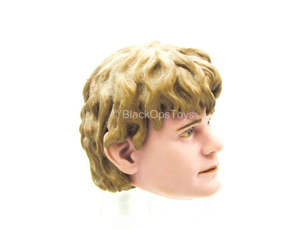 LOTR - Samwise Gamgee - Male Head Sculpt