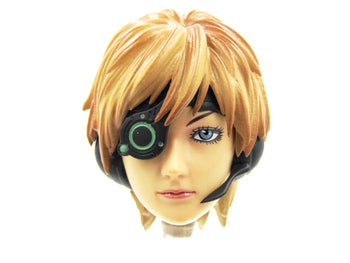 APPLESEED - Deunan Knute - Female Head Sculpt w/Accessories