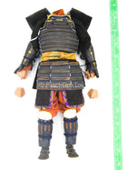 Toyotomi Hideyoshi - Male Dressed Body